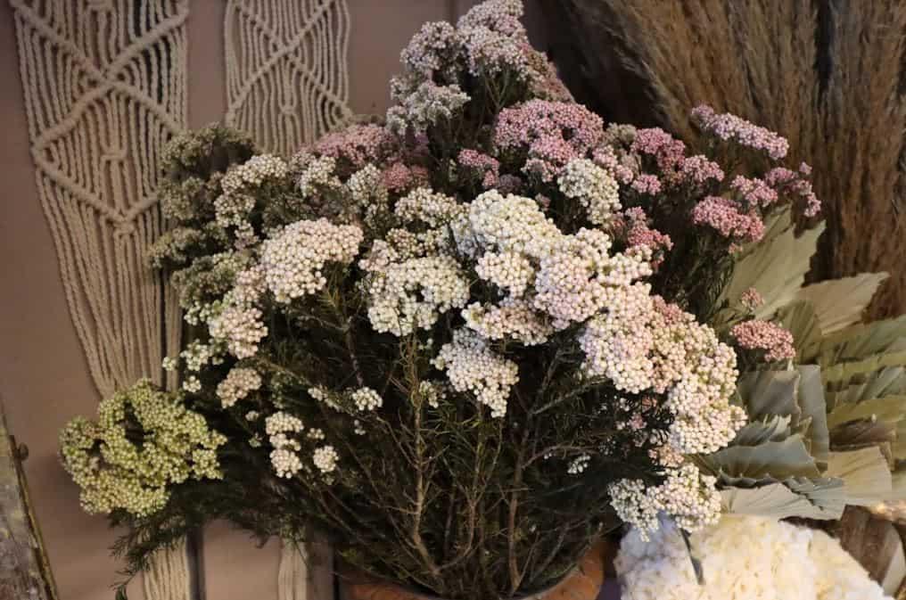 «Riceflower» – Rice flower preserved